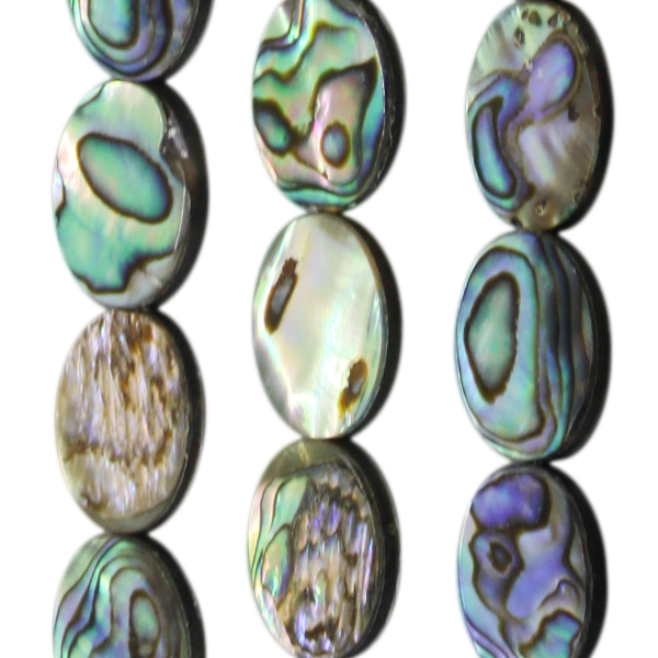 Abalone, oval, flach, L16 B11 H3mm
