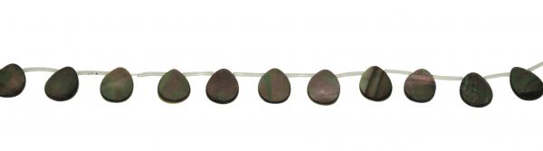Paua Muschel, Tropfen ca. L12 B16 H2mm