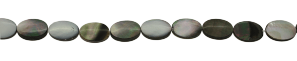 Paua Muschel, oval, flach, L20 B15 H4mm